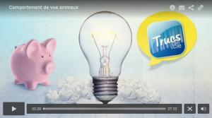 La vidéo de l'émission Trucs et cie - Épisode Comportement de vos animaux