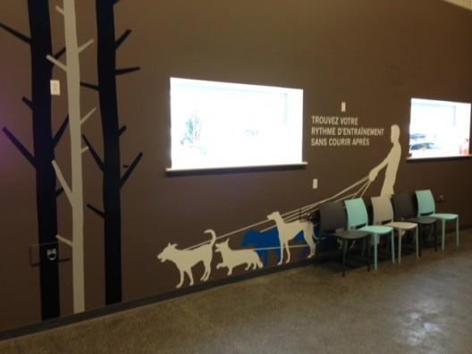 Le comportement animal - Groupe Daubigny