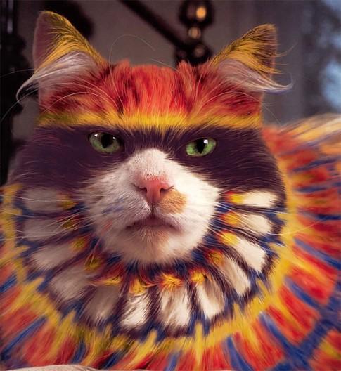 Chat au pelage peint