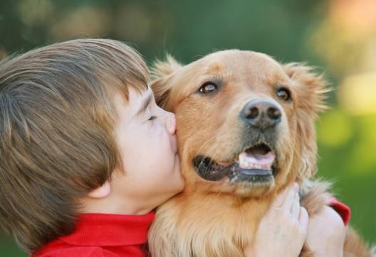 Santé animal: des réponses à vos questions
