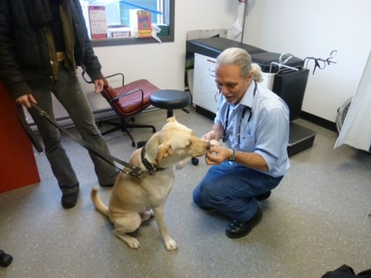Dr Martineau et un des chiens des jeunes de la maison Dauphine